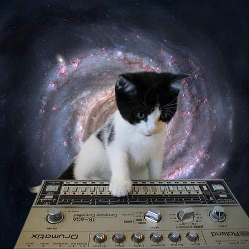 TB 303 + cat in space